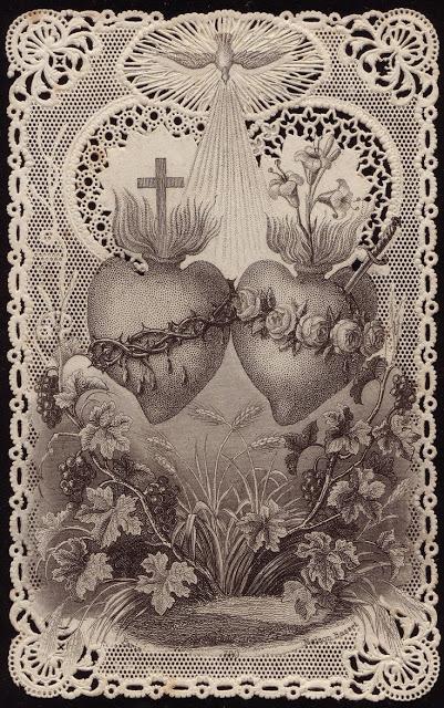 corazon 6