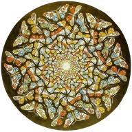 escher06_butterflies