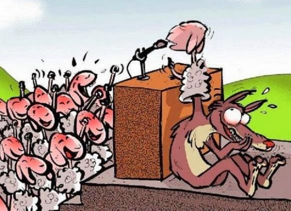 Resultado de imagen para lobo politico ovejas