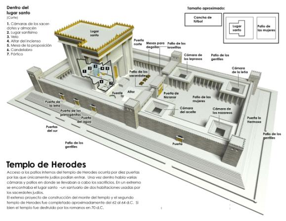 templo y partes
